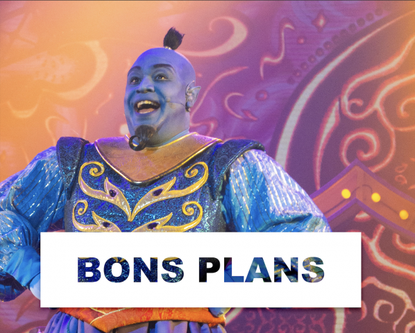 Bons plans dinseyland paris