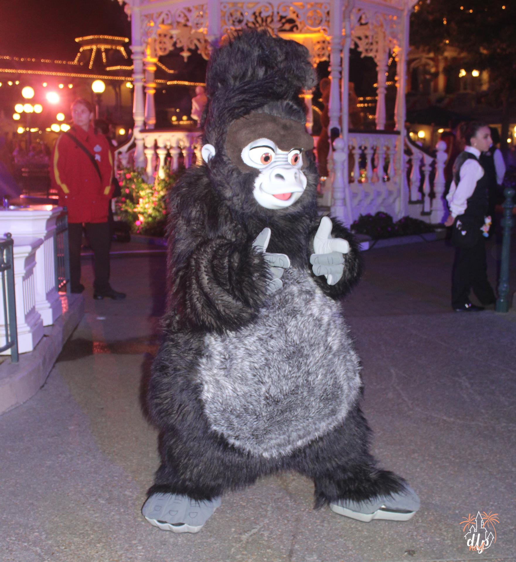 Characters Night Disneyland Paris Tok
