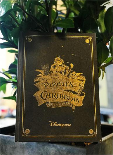 Livre pirates of the caribbean un tre sor d attraction
