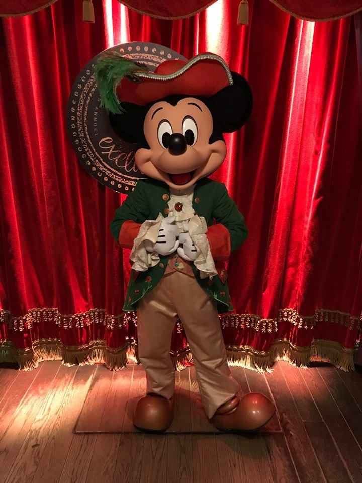 Soire e pass annuel pirates et princesses mickey princier